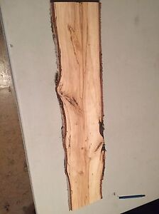 5 poplar planks Edmonton Edmonton Area image 1