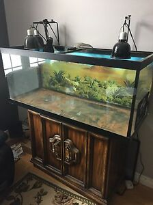Lizard/fish tank. 75 gallon and Lizard accessories.