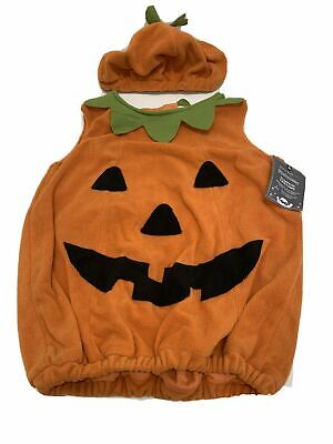 Pottery Barn Kids Halloween Pumpkin Costume Size:12-24 2 Pieces Body and Hat NWT