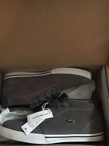 Men's Lacoste  PLATINUM AMPTHILL  Shoes Brand New