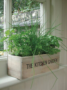 Kitchen Herb Pots eBay