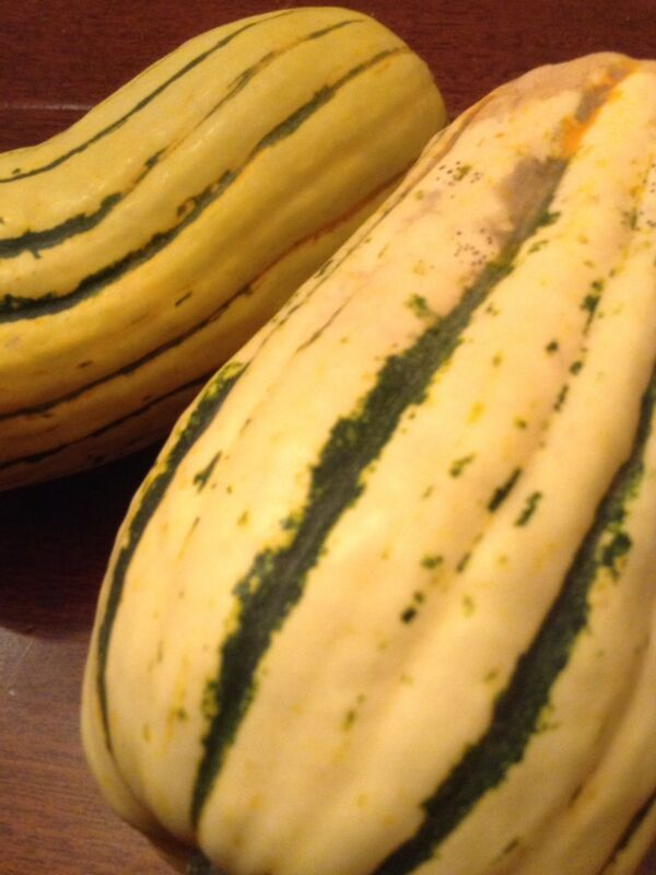 Delicata Squash- 12 organic USA seeds. Easy grow, easy cook & tasty. Pretty too!