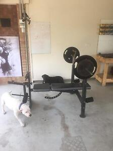Weight Bench and accessories! East Maitland Maitland Area Preview