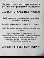 GLOUCESTER AND LYON AREA DOG WALKER AVAILABLE
