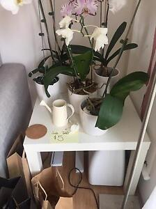 IKEA bedside table white Rose Bay Eastern Suburbs Preview