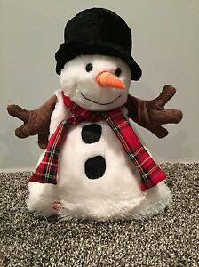 Snowman Hat Singing and Animated
