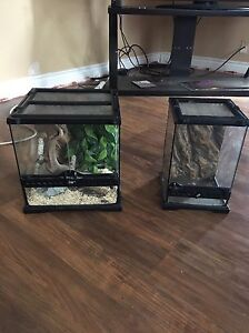 Two terrariums for sale!