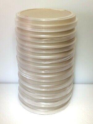 10 Mya Polystyrene Petri Dishes Malt Yeast Extract Agar Agar Plates