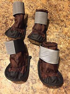 Dog boots