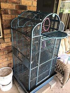 Large bird cage - parrot, ringneck Park Ridge South Logan Area Preview