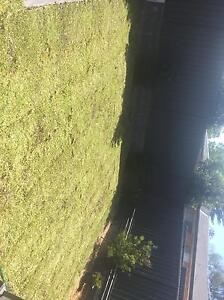 Raj Garden Care Service Lidcombe Auburn Area Preview