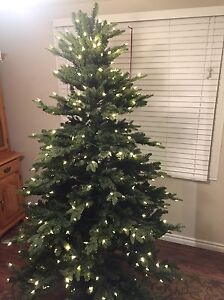 7 ft Gluckstein Home Christmas Tree with Stand