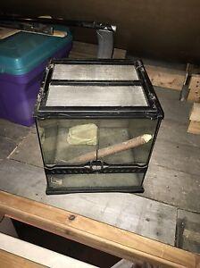 Terrarium / reptile house Gatineau Ottawa / Gatineau Area image 1