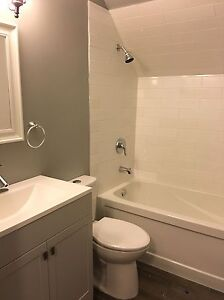 Fully Renovated Two Bedroom Suite Downtown