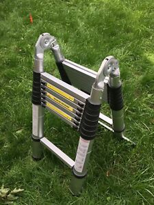 Telescopic/collapsible ladder