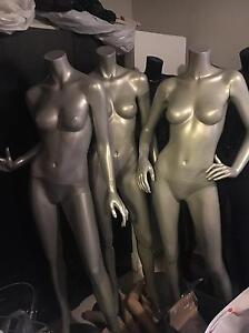 Mannequin mannequins shop fit out Ivanhoe Banyule Area Preview