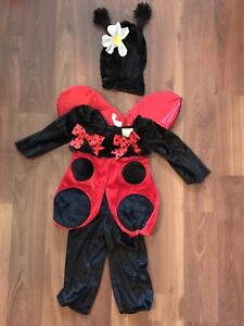 Adorable 3 piece lady bug 12-18 months Halloween costume