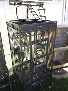 Heavy duty Parrot cage,  parrot play ground and toys Mount Druitt Blacktown Area Preview