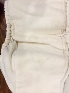 Blueberry Basix - All-In-One diaper - size Large Stratford Kitchener Area image 9