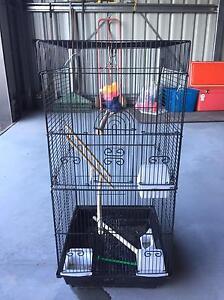 Bird cage Cambridge Clarence Area Preview