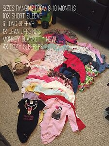 Girl Clothes Lot 9-18 month