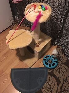 Cat - kitten tree or climber and cat toys etc.