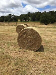GRASS HAY ROUND BALES - New season 5'4 Horse & Cattle Beaconsfield Cardinia Area Preview