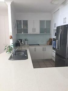 Kitchen and Appliances Sunshine Beach Noosa Area Preview