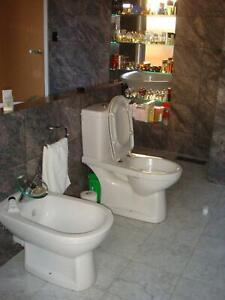 budget plumber