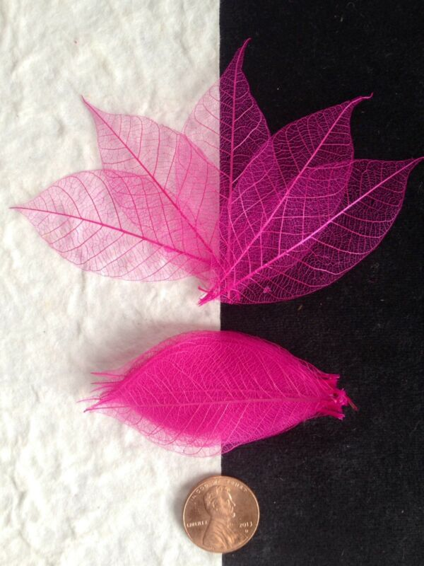 25 Skeleton Leaves Hot Pink Small leaf soapmaking cards candle Valentines Crafts