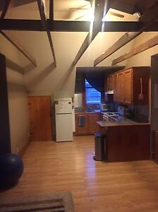 Avail Jan 1st - Spacious 1 Bedroom unit close to DT Kitchener