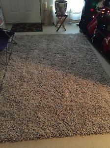 Beautiful Shag area rug- brand new