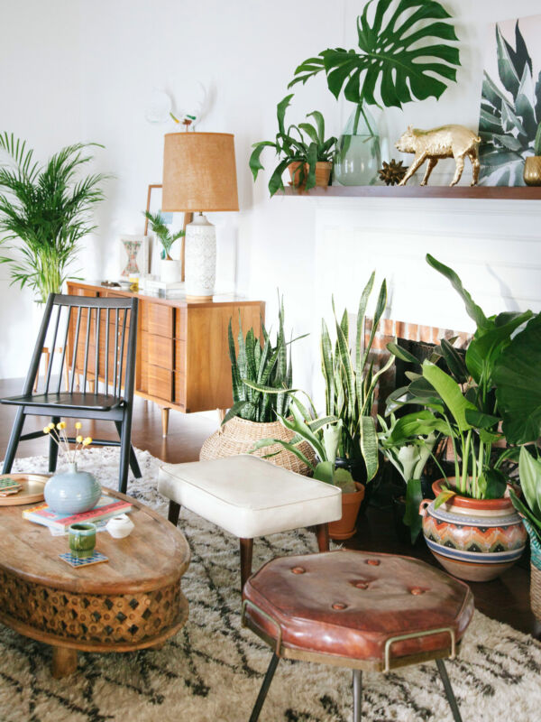 15 gorgeous ways to decorate with plants ebay for Decoration urban jungle