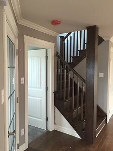 New two story two app St. John's Newfoundland image 2