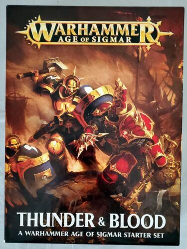 Thunder & Blood Warhammer Age of Sigmar Starter Set PAINTED AoS 80-19-60