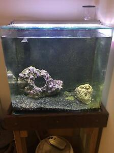60L Complete Nano Marine Tank Moorland Bundaberg Surrounds Preview