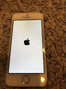 iPhone 5s locked with twlus