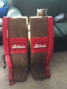 Brian's GNetic 5.0 Goalie Pads and gloves