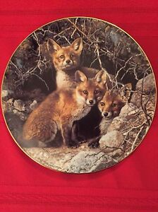 Collector Plates - fox plates,mystic passage