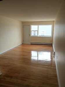 BEAUTIFUL COMPLETELY RENOVATED 1 BDRM ON QUINPOOL ROAD SEPT 1ST