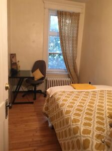 Looking for roommate downtown all included apartment August 1