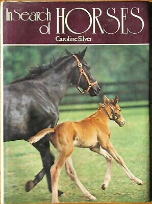 In Search of Horses by Caroline Silver (1976, Hardcover)