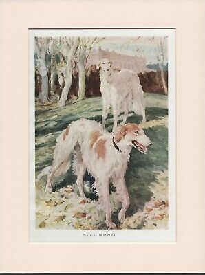 Borzoi Dog Russian Wolfhound Embroidered Patch