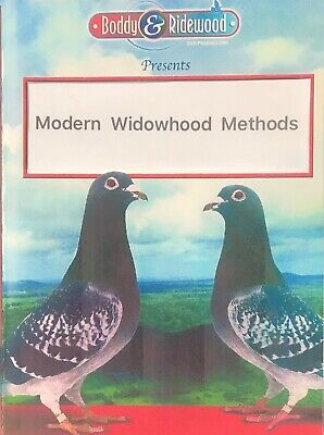 Modern Widowhood Methods  Dvd Racing Pigeon Dvd