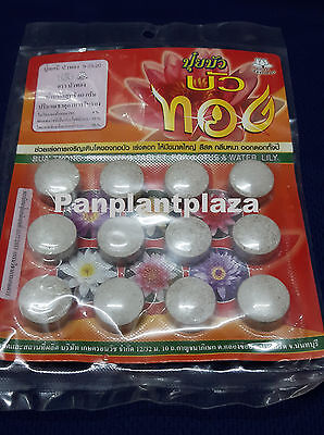 FERTILIZER TABLET FOR LOTUS WATER LILY FISH SAVE BEST