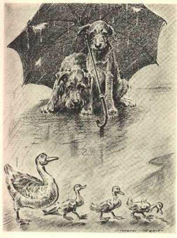 MORGAN DENNIS DOG ART PRINT IRISH TERRIERS AND DUCKS IN THE RAIN VINTAGE 1946