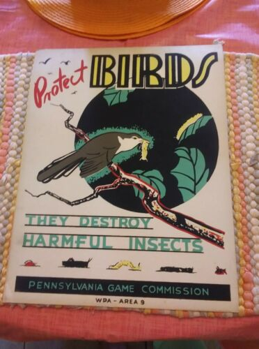 Original 1930,s Pa. Game Commission WPA Area 9 Protect Birds 11x14 Poster