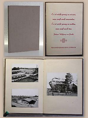 Fotoalbum 33 Orig Fotografien Volkseigenes Gut Stroga Großenhain Sachsen um 1970