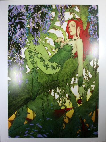 "BATMAN #26 ART PRINT by Joshua Middleton ~ 12"" x 16"" ~ Great Condition"