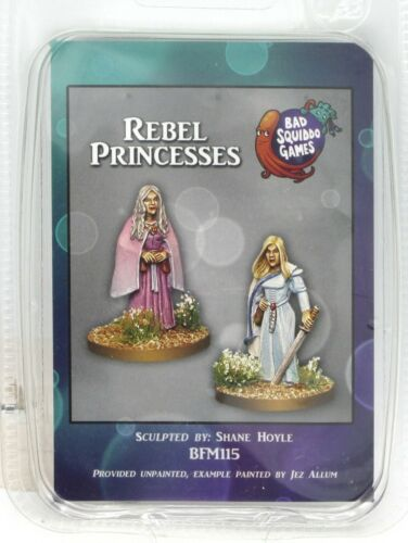 Bad Squiddo Games BFM115 Rebel Princesses (Amazons) Female Warriors Mages Heroes